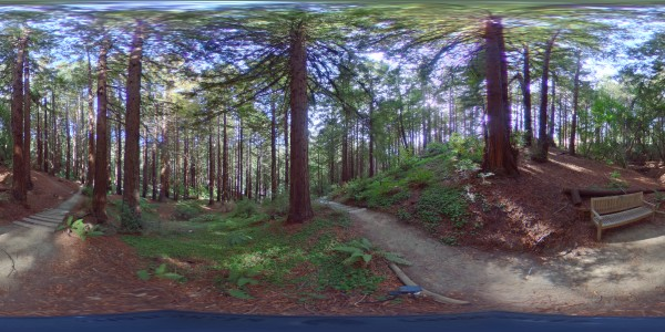 Sample 360 image showing distortion at the top and bottom